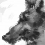 A sort of dog (brushes - 2009)