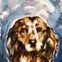 hayote (aquarelle - 2009) - commande d'une esquisse de chien aquarellée -