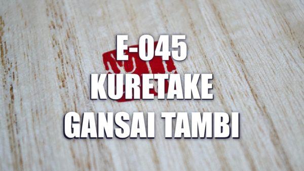 E045 – Kuretake Gansai Tambi
